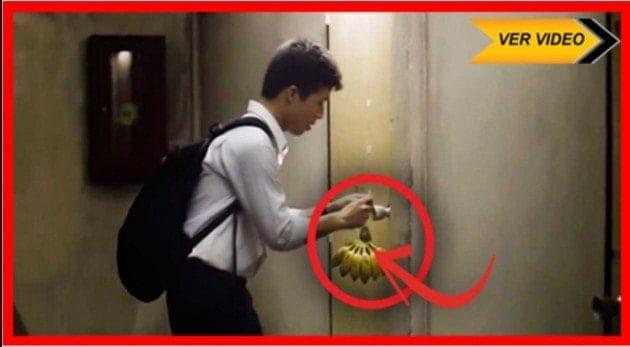 Él pone bananas en su puerta todos los días. Casi lloro cuando me di cuenta del porqué