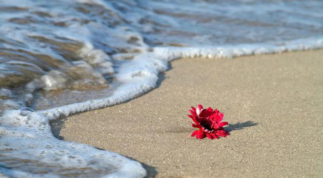 Un niño en la playa
