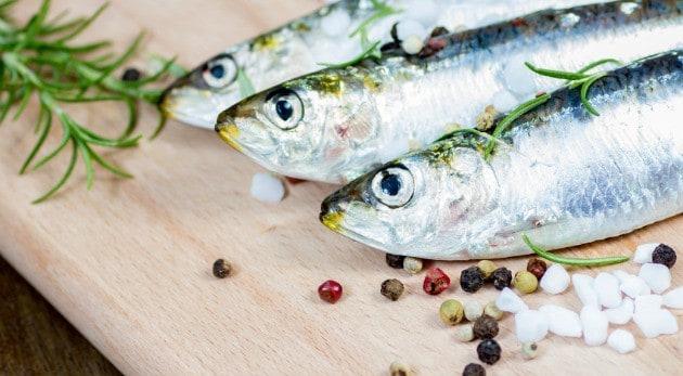 Studio shot of raw sardine with spices