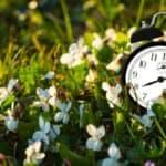 ¡El tiempo de Dios es perfecto!